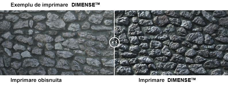 Exemplu_imprimare_Dimense-structure